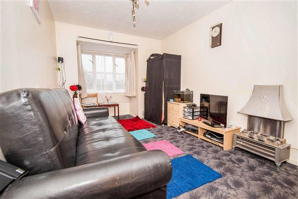 Conifer Way